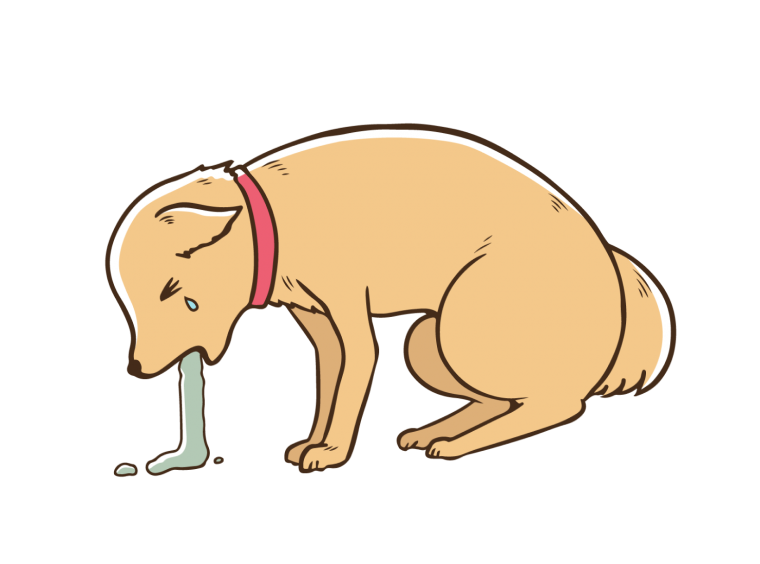 犬と暮らした季節;挿絵2